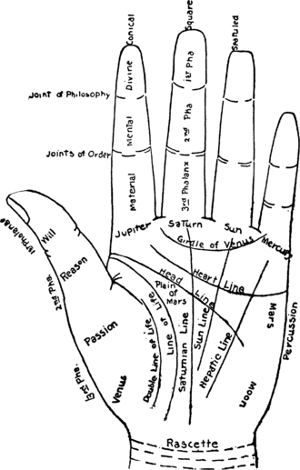 chart_of_the_hand